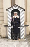 Castle Guard standing guard in his sentry Box at Prague Castle. Stock Images