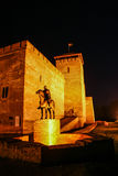 Castle in Gyula at night Royalty Free Stock Photography