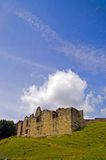 Castle on the hill. The castle Royalty Free Stock Photos