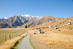 Castle hill Arhur's Pass National Park New Zealnd Stock Photography