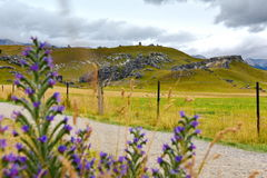 Castle Hill, famous for its giant limestone rock formations in New Zealand Stock Photos