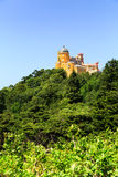 Castle on the hill Royalty Free Stock Images