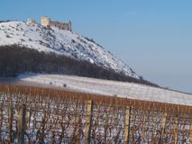 Castle on a hill near vineyards Stock Photography