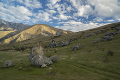 Castle Hill. New Zealand Stock Images