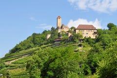 Castle Hornberg Neckar στην κοιλάδα στη Γερμανία Στοκ Εικόνες