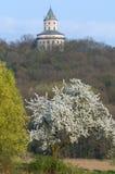 Castle Humprecht, Czech republic Stock Photo