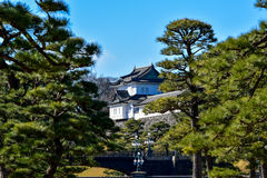 Castle imperial palace tokyo japan, winter. View  castle imperial palace in tokyo, japan Stock Image