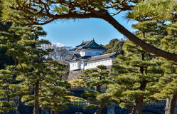 Castle imperial palace tokyo japan, winter. View  castle imperial palace in tokyo, japan Royalty Free Stock Photos