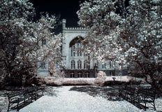 Castle in Kornik Stock Photos
