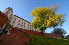 The castle in Krakow Wawel Royalty Free Stock Photography