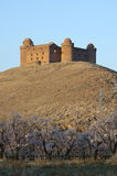 Castle of La Calahorra , Spain Stock Images