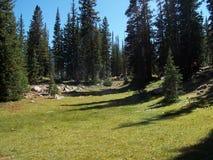 Castle Lake Meadow Royalty Free Stock Photos