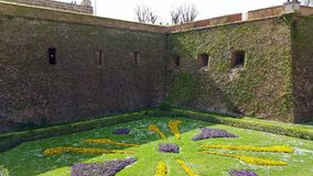 Castle lawn and wall. Fortress wall covered in ivy and lawn Stock Image