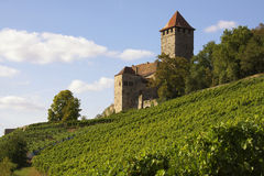 Castle Lichtenberg. The castle Lichtenberg, Baden-Wuerttemberg, Germany Stock Photo