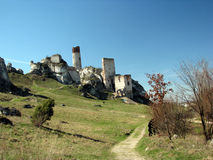 Ruins of medieval castle in Polish Jura. Royalty Free Stock Photography