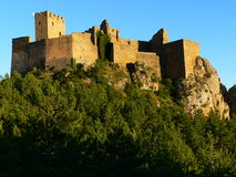 Castle of Loarre , Huesca (Spain). View of the castle of Loarre with the pinewood around it Royalty Free Stock Images