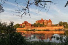 Castle in Malbork. Stock Images