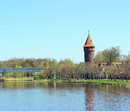 Castle in Malbork Royalty Free Stock Images