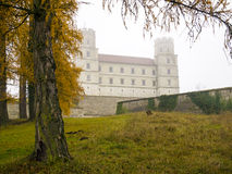 Castle in the mist Stock Photos