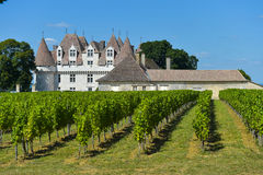 Castle Montbazillac-Vineyard of Bergerac-Dordogne-France Stock Photography