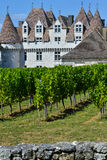 Castle Montbazillac-Vineyard of Bergerac-Dordogne-France Stock Images
