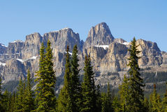 Castle mountain in banff Royalty Free Stock Photos