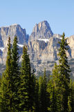 Castle mountain in banff Stock Photography