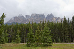 Castle Mountain, Banff stock photography