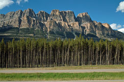 Castle Mountain, Banff, Alberta, Canada stock images