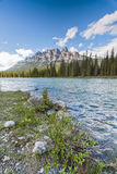 Castle Mountain at the Shores of the Bow RIver in Banff National Stock Images