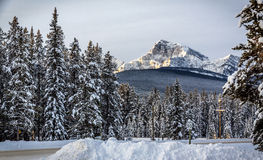 Castle mountain view in the snow stock image