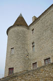 Castle of Nemours Royalty Free Stock Images