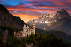 Castle Neuschwanstein. The castle Neuschwanstein in Germany Royalty Free Stock Photography