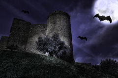 Castle in the night. A castle in the mysterious night with moon and bats royalty free stock image