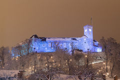 Castle at night. Royalty Free Stock Photo