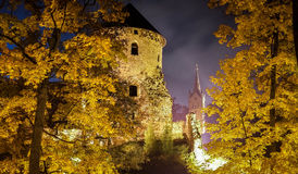 Castle at night. Surrounded by autumn leaves Stock Image