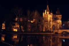 Castle at the night time, Budapest Royalty Free Stock Photo