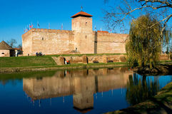 Castle Of City Gyula In Hungary Stock Photo