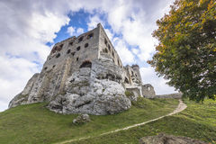 Castle in Ogrodzieniec Stock Photography