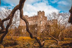 Castle. Royalty Free Stock Photo