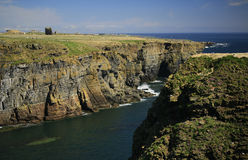 Castle of Old Wick and Caithness cliffs. The Castle of Old Wick is on the coast approx 1 km south of Wick, Caithness Stock Photo