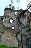Castle. One of the walls of the castle ruins Royalty Free Stock Photo