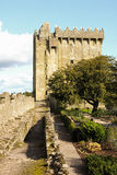 Blarney castle. co. Cork . Ireland Royalty Free Stock Images