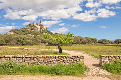 Castle of Pedres - Olbia Sardinia. A view of Castle of Pedres near Olbia city in Sardinia stock images