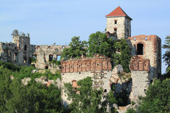 Castle in Poland Stock Image