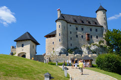 Castle in Poland Stock Images