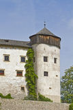 Castle Proesels Royalty Free Stock Images