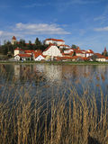 Castle And Reeds, Ptuj, Slovenia Royalty Free Stock Photo