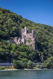 Castle Reichenstein (Middle Rhine Valley) Stock Images