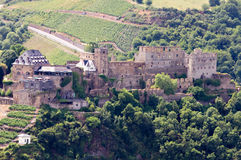 Castle Rheinfels in the Rhine Valley. With surrounding vineyards, Germany royalty free stock image
